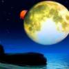 月是故土明