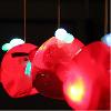 flowers74