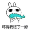 新宁网活动组